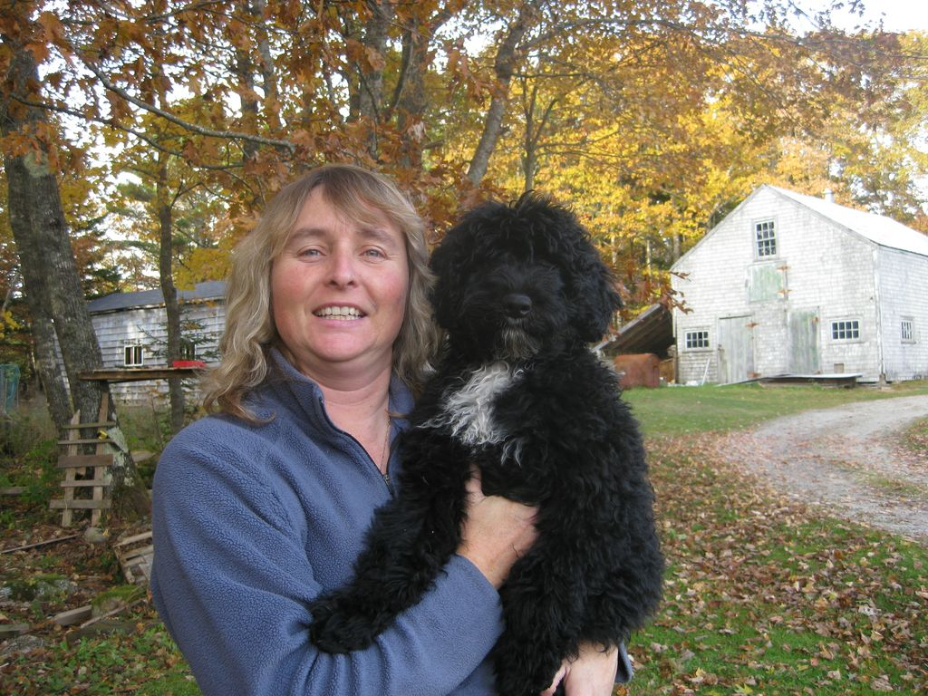 JanePups200x274 Specializing in Portuguese Water Dogs